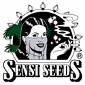 Sensi Seeds - Graine Cannabis