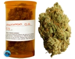 Oaksterdam, medicinal marijuana, medical marijuana, kush, og kush