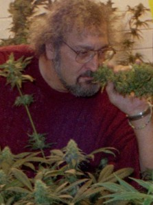 Jack Herer smelling the award winning cannabis strain named after him